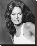 Karen Black Stretched Canvas Print