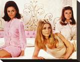 Valley of the Dolls (1967) Stretched Canvas Print