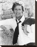 Ian Ogilvy, Return of the Saint Stretched Canvas Print