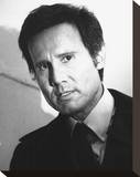 Henry Silva Stretched Canvas Print