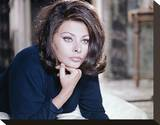 Sophia Loren, Operation Crossbow (1965) Stretched Canvas Print