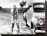 Joy Harmon, Cool Hand Luke (1967) Stretched Canvas Print