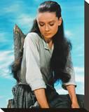 Audrey Hepburn, The Unforgiven (1960) Stretched Canvas Print