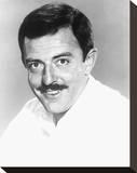 John Astin Stretched Canvas Print