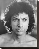 Jeff Goldblum Stretched Canvas Print