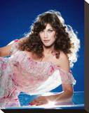 Barbi Benton Stretched Canvas Print