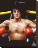 Rocky II Stretched Canvas Print