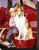 Jon Provost, Lassie (1954) Stretched Canvas Print