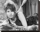 Sophia Loren, The Millionairess (1960) Stretched Canvas Print