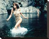 Tanya Roberts, The Beastmaster (1982) Stretched Canvas Print