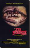 The Funhouse Stretched Canvas Print