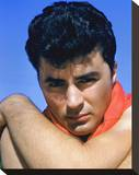 James Darren Stretched Canvas Print