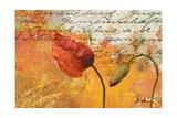 Poppies Composition II Premium Giclee Print by Patricia Quintero-Pinto