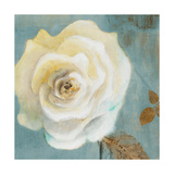 Late Summer Roses Giclee Print by Lanie Loreth