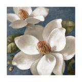 Magnolias on Blue I Poster von Lanie Loreth