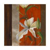 Lily in Bloom II Giclee Print by Lanie Loreth