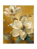 Magnolias Aglow at Sunset I Giclée-Premiumdruck von Lanie Loreth