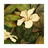 Hibiscus Leaves II Giclee Print by Patricia Pinto