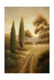Auburn II Premium Giclee Print by Michael Marcon