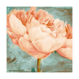 Beautiful Peonies Square II Premium Giclee Print by Patricia Quintero-Pinto