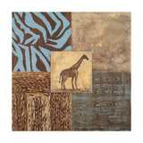 Textures of Africa II Premium Giclee Print by  Hakimipour-ritter