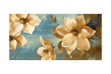 Magnolia Aglow I Premium Giclee Print by Lanie Loreth