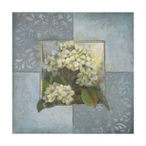 Hydrangeas on Blue II Giclee Print by Patricia Quintero-Pinto