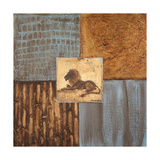 Textures of Africa I Premium Giclee Print by  Hakimipour-ritter