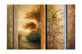 Momentary Radiance Premium Giclee Print by Michael Marcon