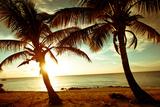 Bimini Sunset Fotoprint van Susan Bryant