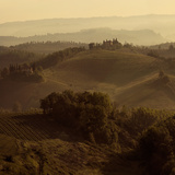 Sunrise over Tuscany I Photographic Print by Shelley Lake