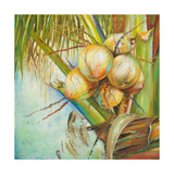 Patricia's Coconuts II Giclee Print by Patricia Pinto