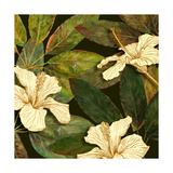 Hibiscus Leaves I Giclée-Druck von Patricia Pinto