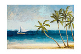 Atlantic Daydream II Premium Giclee Print by Michael Marcon