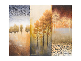 Lost in Trees II Premium Giclee Print by Michael Marcon