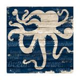 Coastal Wonder I Premium Giclee Print by Gina Ritter