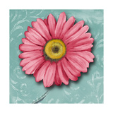 Blooming Daisy IV Premium Giclee Print by Patricia Quintero-Pinto