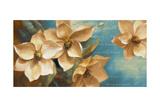 Magnolia Aglow II Premium Giclee Print by Lanie Loreth