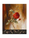 Crimson Rose I Premium Giclee Print by Lanie Loreth
