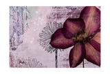 Pressed Flowers I Premium Giclee Print by Patricia Quintero-Pinto