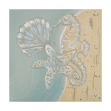 Pearl Beach II Premium Giclee Print by  Hakimipour-ritter