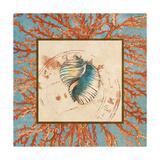 Coral Medley Shell I Print by Lanie Loreth