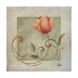 Ornaments in Peach II Giclee Print by Patricia Quintero-Pinto