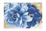 Beautiful Peonies in Indigo Premium Giclee Print by Patricia Quintero-Pinto