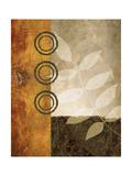 November Textures II Premium Giclee Print by Michael Marcon