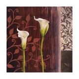 Calla Lilies II Giclee Print by Michael Marcon