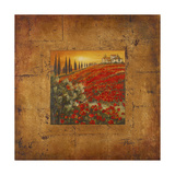 Bella Toscana II Giclee Print by Patricia Quintero-Pinto