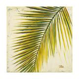 Barú Palm I Premium Giclee Print by Patricia Quintero-Pinto