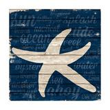 Coastal Wonder II Premium Giclee Print by Gina Ritter