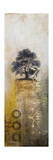Silent Tree I Premium Giclee Print by Michael Marcon